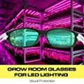 iPower Indoor Hydroponics LED Grow Room Light Glasses Goggles Anti UV Reflection Visual Optical Protection (UV400)