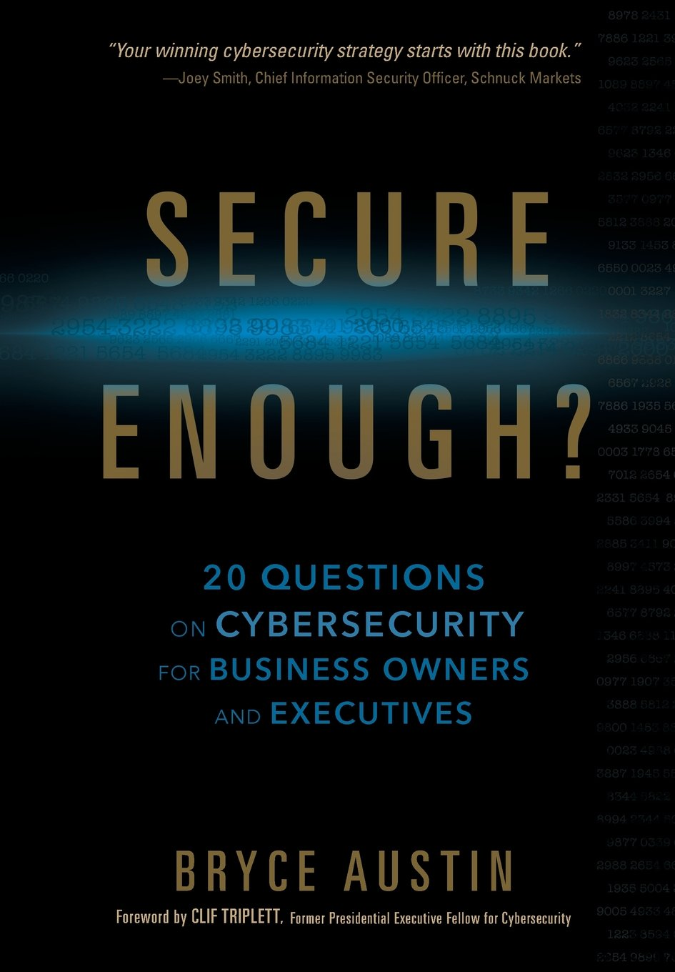 Secure enough 20 questions on cybersecurity for business owners secure enough 20 questions on cybersecurity for business owners and executives bryce austin 9780999393109 amazon books fandeluxe Images
