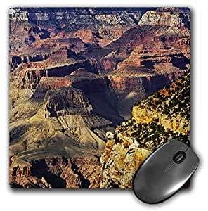 health related pico questions and answer from grand canyon Get started with an insurance quote, or talk with an agent today from foremost to protect the people and things you value most.