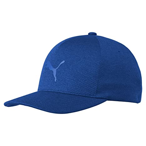 Amazon.com   Puma Golf 2017 Men s Evoknit Hat   Sports   Outdoors 4402e48d4cb