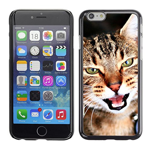 Premio Sottile Slim Cassa Custodia Case Cover Shell // V00003108 cat portrait 1 // Apple iPhone 6 6S 6G PLUS 5.5""