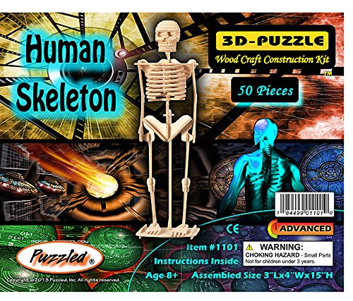 Creatology Wooden 3D Puzzle, Skeleton - 14 1/2 Inches Tall (1 Each) (Halloween Skeleton Puzzle)