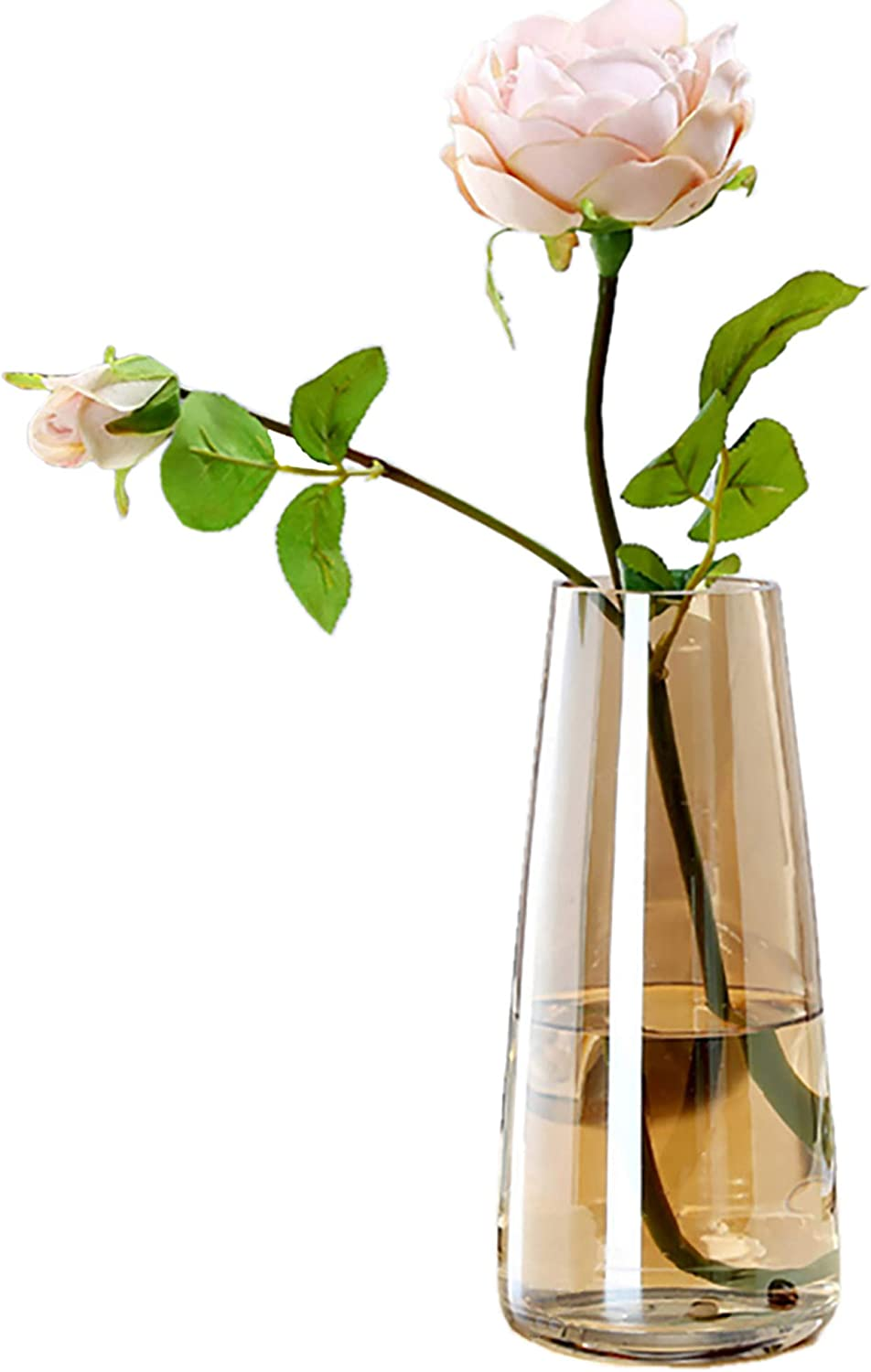 Fantastic Ryan Ins Modern Glass Vase Irised Crystal Clear Glass Vase for Home Office Decor (Crystal Amber)