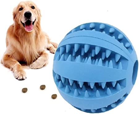 Pet Supplies : HESHPAWS Dog Toy Balls, IQ Treat Balls, Fun Interactive Food  Dispensing Dog Toys, Non-Toxic Natural Rubber Tooth Cleaning Toys for Pet  Tooth Cleaning/Chewing/Playing/Treat Dispensing : Amazon.com