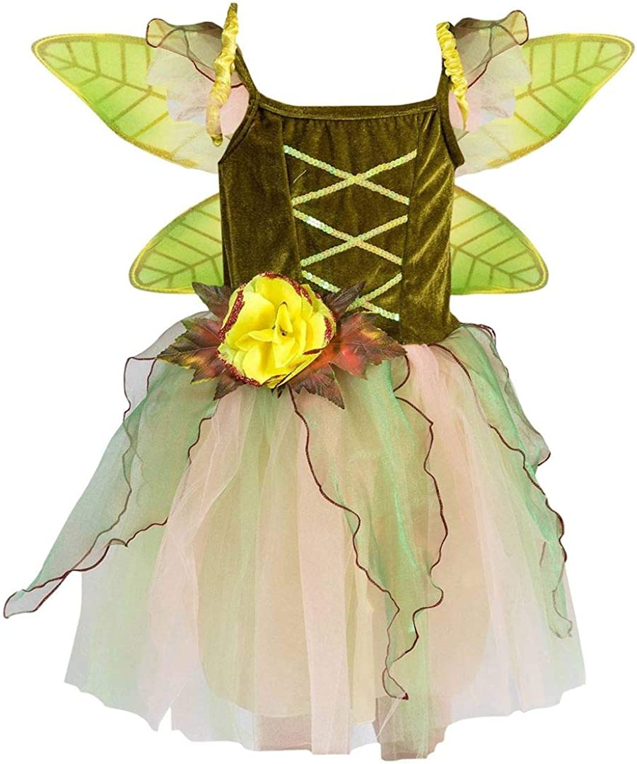 Petitebella Fairy Costume Dress 1-10y