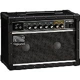 Roland JC-22 Jazz Chorus 30W 2x6.5 Guitar Combo Amplifier Black