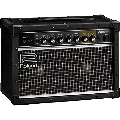 Roland JC-22 Jazz Chorus 30W 2x6.5 Guitar Combo Amplifier Black by Roland