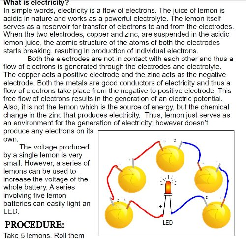 fruit battery information
