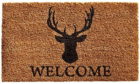 NYDECOR Front Door Mat Outdoor Indoor Enter Funny Doormat Outside Large Rubber Thin Non Slip Carpets for Bedroom Kitchen Patio Garden, 2 x 3 The Dog