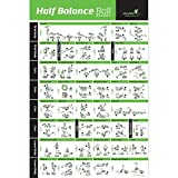 "NewMe Fitness Half Balance Ball Workout Poster, Laminated :: Illustrated Guide with 40 Toning and Strengthening Exercises :: Hang in Your Home or Gym, for Men & Women, 20"" x 30''"