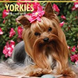Yorkshire Terriers Wall Calendar Dogs 2018 BEST VALUE {jg} Best Holiday Gift Ideas - Great for mom, dad, sister, brother, grandparents, grandchildren, grandma, gay, lgbtq.
