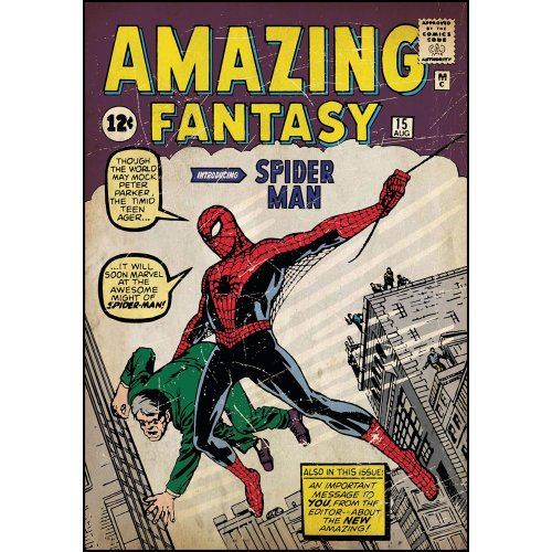Spiderman First Issue Comic Book Cover Wall Accent Sticker