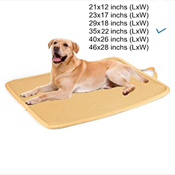 Amazon.com: Kimi Homes - Alfombrilla para jaula de perro ...