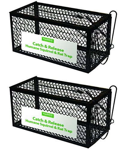 HARRIS Catch and Release Humane Cage Trap for Rats
