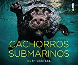 capa de Cachorros Submarinos