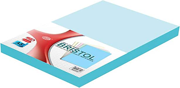 لوح بريستول 240 جرام لكل متر مربع، مجموعة من 100 قطعة من اف اي اس - FSBI240A5BL