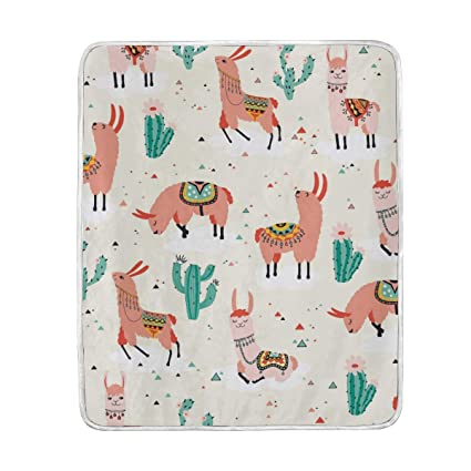 Amazon.com  Alpaca with Cactus Cute Throw Blanket for Couch Bed ... 7f47369bc5