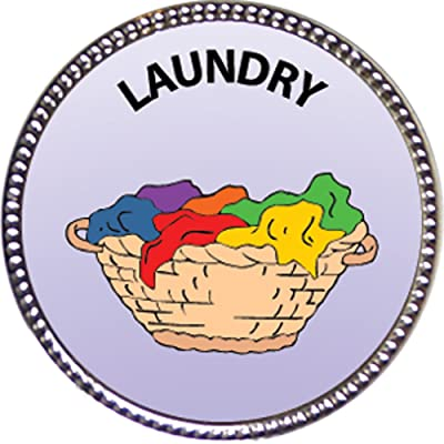 Keepsake Awards Laundry Award, 1 inch Dia Silver Pin Around The Home Collection: Toys & Games