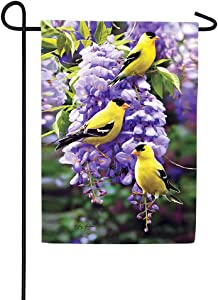 Custom Decor Golfdinch & Wisteria - Garden Size, Decorative Double Sided, Licensed and Copyrighted Flag - Printed in The USA Inc. - 12 Inch X 18 Inch Approx. Size