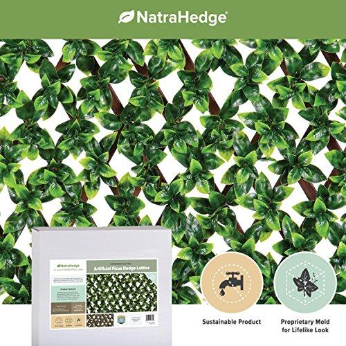 (NatraHedge Artificial Ficus Leaf Expandable Lattice)