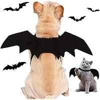 Kostium dla psa, na Halloween, dla zwierząt domowych, nietoperza, kostium Pet Bat dla psa, kota, nietoperz, kostium na…
