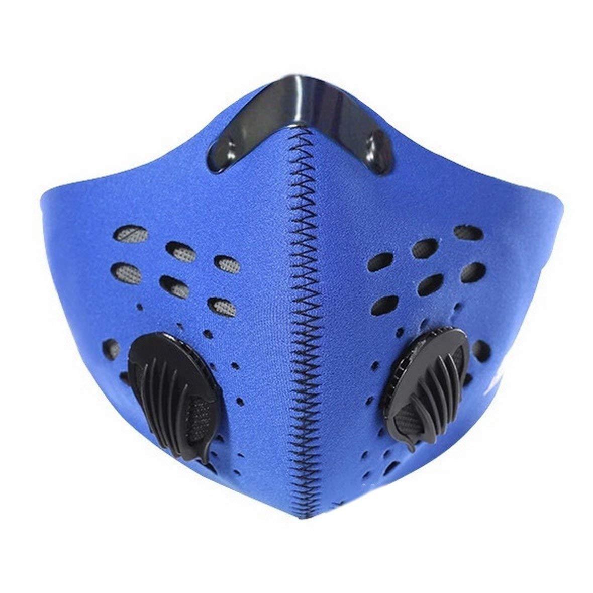Masque Anti-poussière Heaviesk Masque de Pollution Masque Anti-poussière de Pollen Adulte Anti-PM 2.5 Masque à Charbon Actif Lavable Anti-buée Filtre à Charbon Actif avec 2 filtres