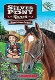 Silver Pony Ranch #1: Sparkling Jewel