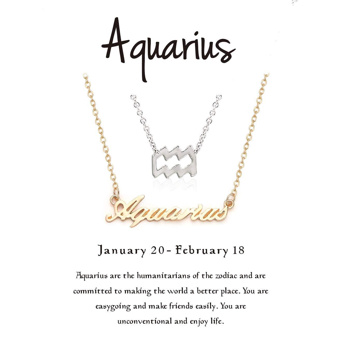 6a80012091795 Cyberny Dainty 12 Zodiac Constellation Necklace for Women Silver & Gold Tone