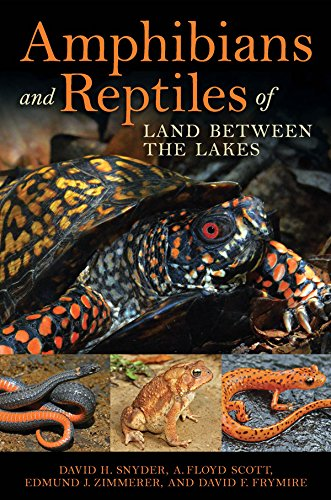 amphibians-and-reptiles-of-land-between-the-lakes