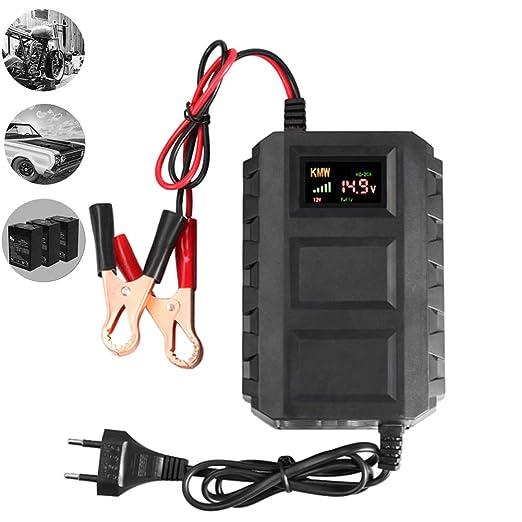 Charger-EJOYDUTY Cargador de batería Inteligente de 12V 20A, para ...