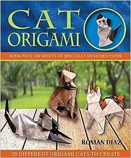 Cat Origami Books Roman Diaz 9781626865952 Amazon