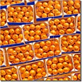 ''Clementines'' by Beaman Cole - Artwork On Tile Ceramic Mural 12.75'' x 12.75'' Kitchen Backsplash
