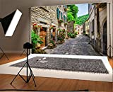 italian backdrop - Laeacco 10x6.5ft Vinyl Backdrop Photography Background European Building Italy Street Typical Italian Small Provincial Town Tuscan Narrow Alley Flowers Stone House Scenery Travel Resort Spots Backdrop
