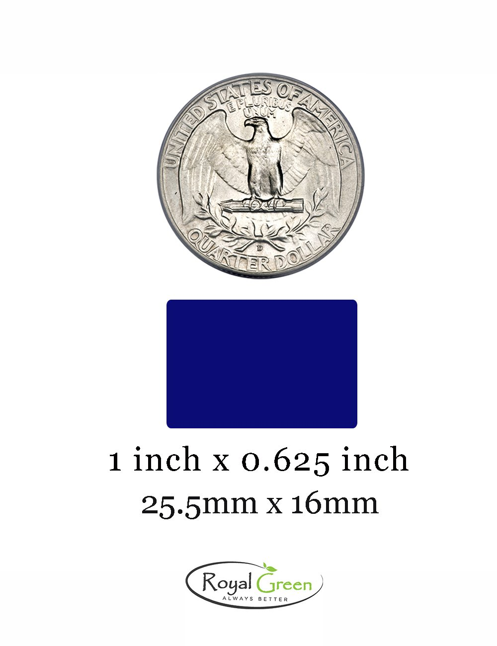 Confezione da 1080 Pezzi Royal Green Bollini Adesivi Arancioni da 13 mm in Rotolo Etichette Adesive Colorate Rotonde Scrivibili Multiuso 1,3 cm