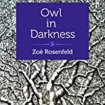 Owl in Darkness   Zoë Rosenfeld