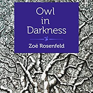 Owl in Darkness Audiobook
