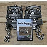 (6 pack) Minnesota Brand MB 550-RC Fox & Coyote Trap 2-Coiled OS Free DVD INCLD