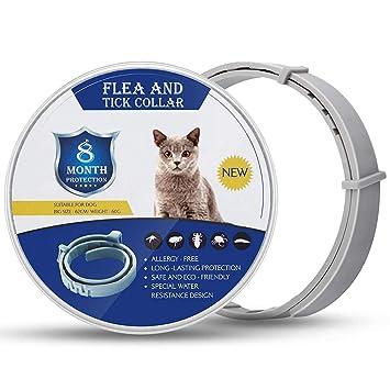 GLEADING Collar Anti pulgas y garrapatas para Perros y Gatos, prevención de garrapatas y pulgas hipoalergénico e Impermeable por 8 Meses de ...