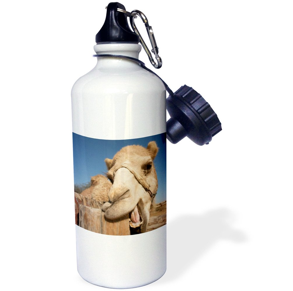3D Rose wb/_239802/_2 Flip Straw Water Bottle 21 oz