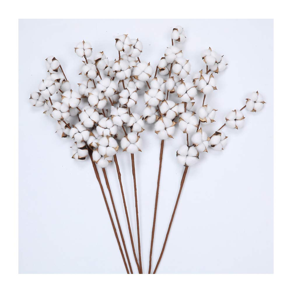 The Wreath King 29'' Tall Cotton Stems-6 Pack, 11 Cotton Buds Each, with Chic Cotton Branches Farmhouse Rustic Style Display Filler Home Floral Decor, White and Brown by The Wreath King