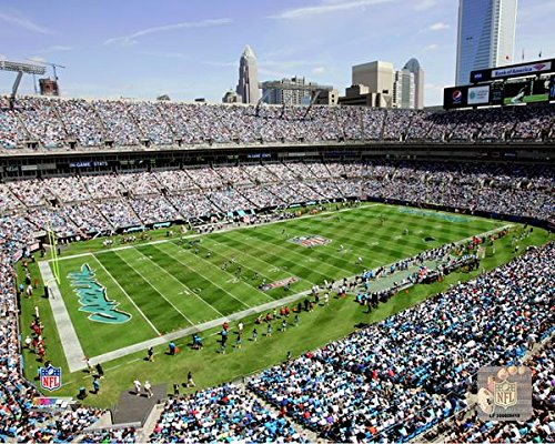 Carolina Panthers Bank of America Stadium Photo (Size: 8