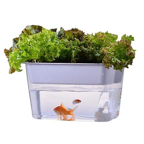 jazpenybow Tanque de Peces Cultivar Plantas Peces Verduras simbiótico ecológico sin Agua computadora pecera, Tortuga