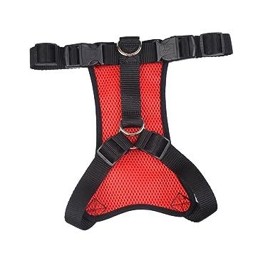 Guinzaglio per Cani Nylon Guinzaglio Allungabile Guinzaglio per Gatti Cani Guinzaglio Cintura di Sicurezza Auto Regolabile Per Cane