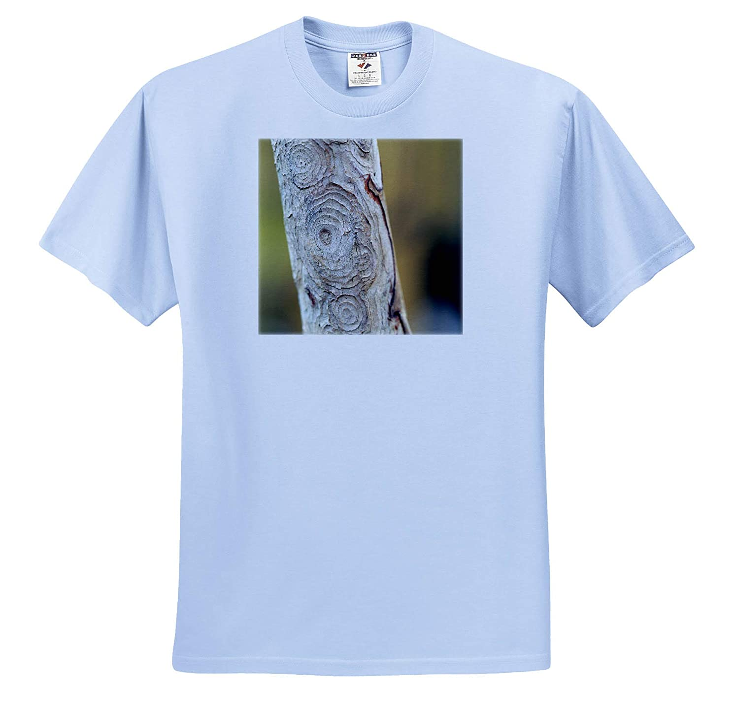 - Adult T-Shirt XL Macro Photograph of The Circles of bark of a Crepe Myrtle Tree ts/_315554 Nature 3dRose Stamp City