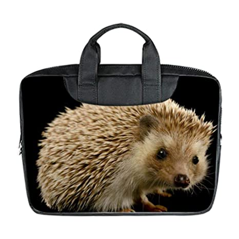 Amazon.com: COL DOM Hedgehogs - Bolsa impermeable para ...