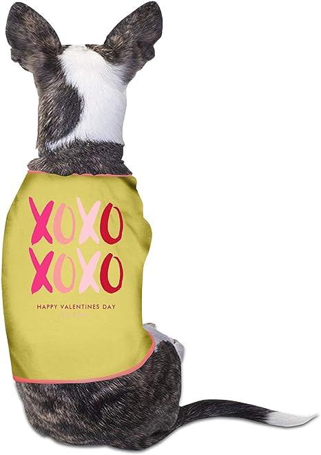 Smile Shop - Disfraz de Perro para el día de San Valentín: Amazon ...