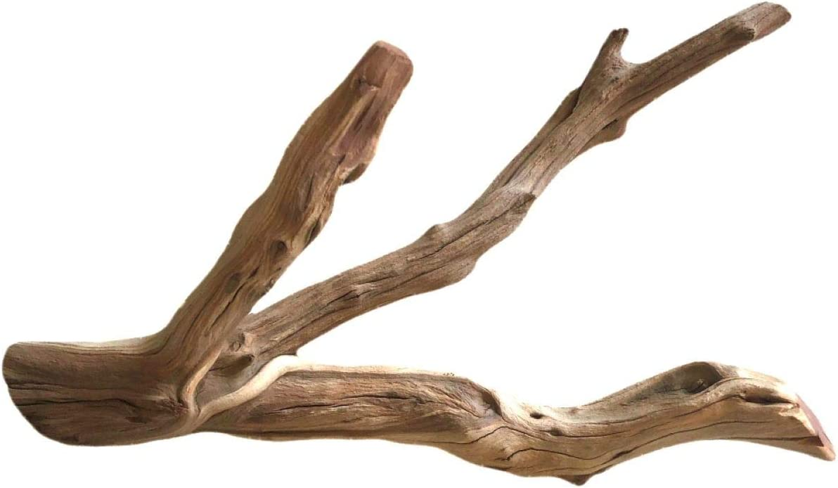 Finn/'s Forest 30 Inch Manzanita Branch XX Large Driftwood for Aquarium Decorations XX Large Driftwood for Reptiles Branch 30 Inch