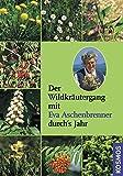 Der Wildkräutergang mit Eva Aschenbrenner durchs Jahr: mit CD
