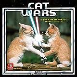 Cat Wars 2018 Wall Calendar (CA0115)