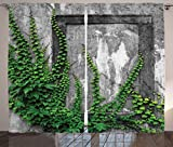 Lunarable Mystic Curtains, Ivy Plant on Wall Aged Antique Looking Picture Frame as a Window Creative Art, Living Room Bedroom Window Drapes 2 Panel Set, 108 W X 108 L inches, Green and Grey